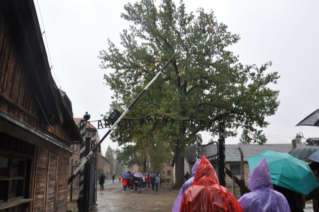 Pupils pass through the gate in heavy rain. 04_c41auschwitz03