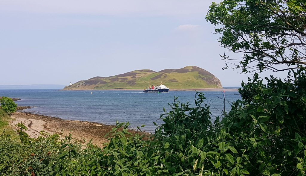 The MV Isle of Arran, pictured in front of Davaar Island, was a welcome sight in Campbeltown Loch.