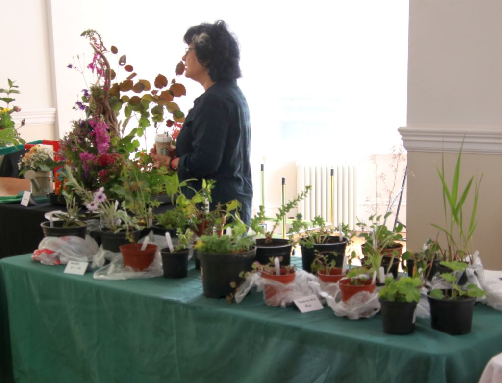 There were also plants for sale.