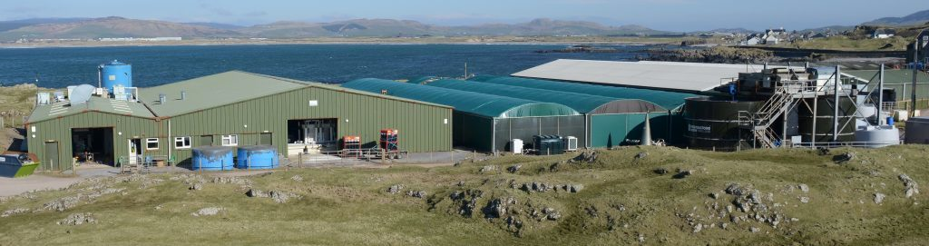 £6m wrasse factory row reignited