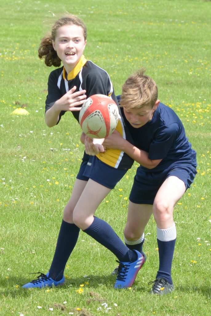 Mini Meadows rugby festival