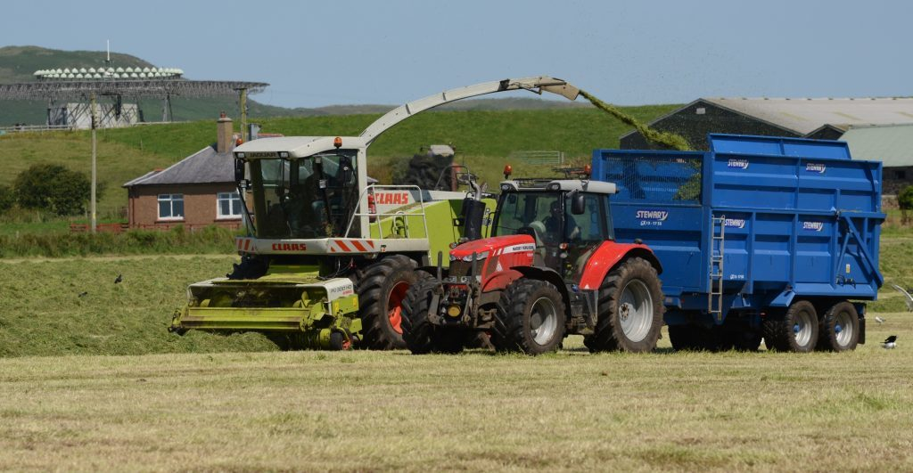 Make silage while the sun shines