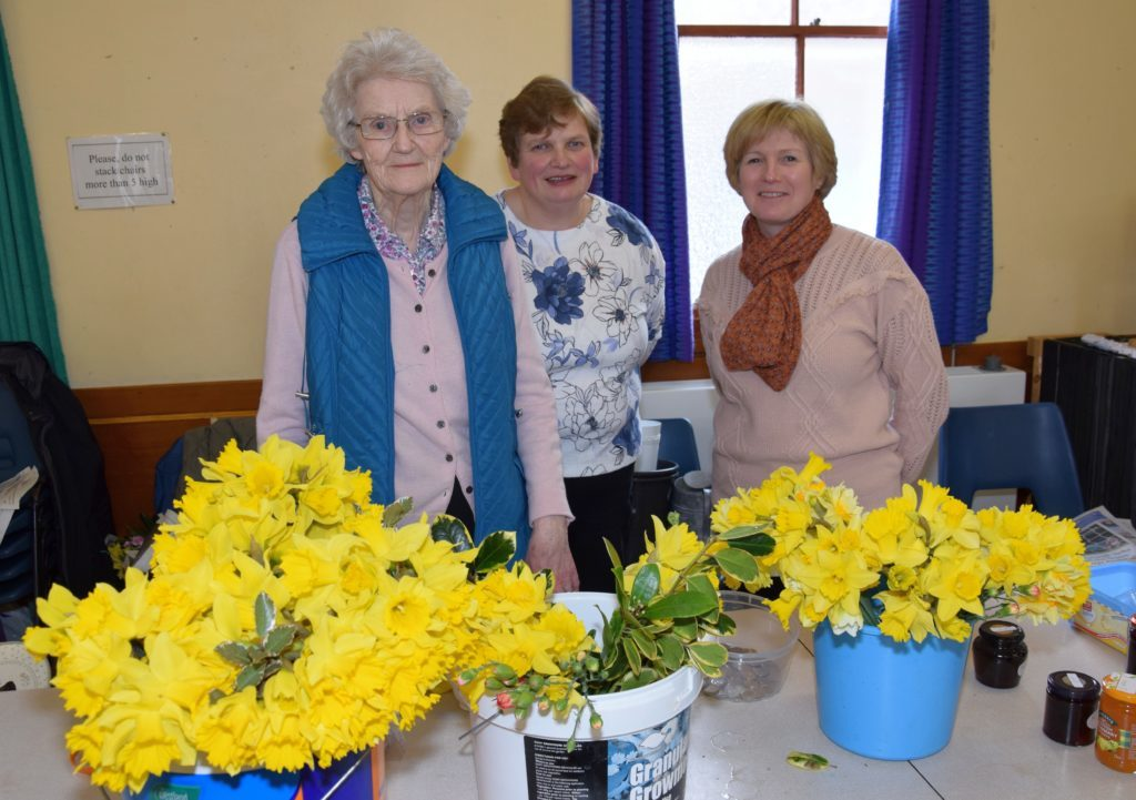 Guild's blooming buckets of daffodils