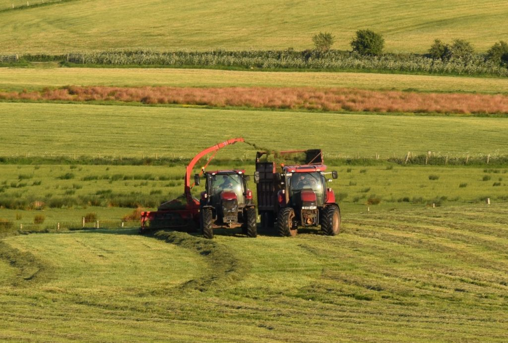 Making silage while the sun shines