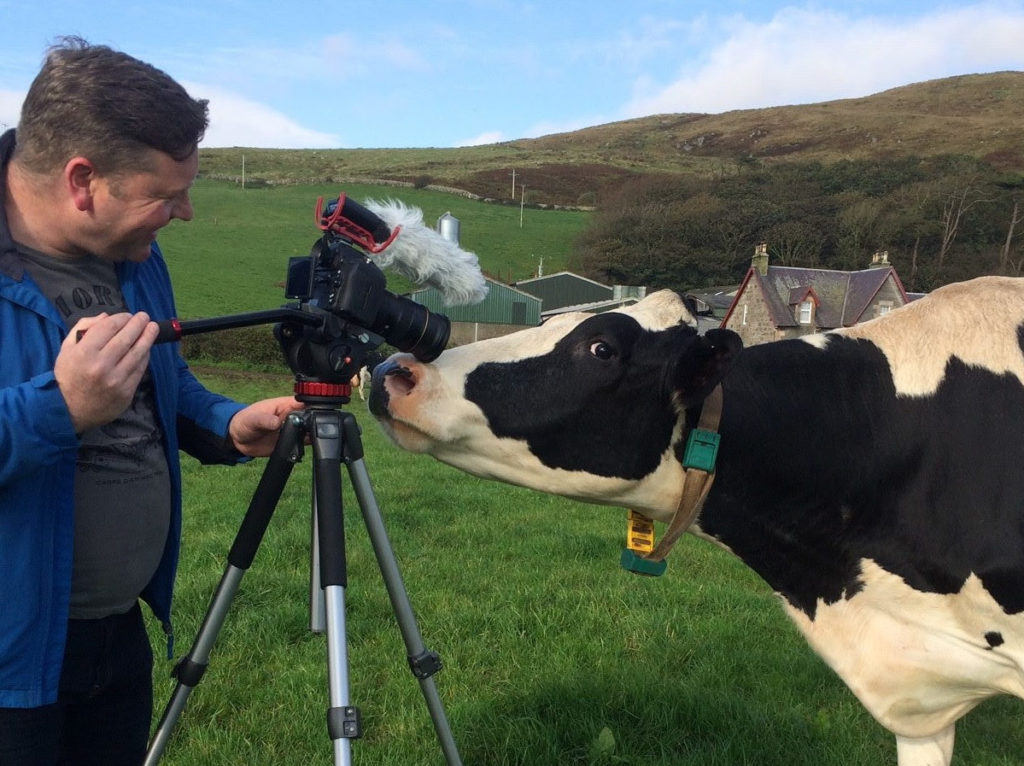 Creamery coup in the pipeline for Kintyre farmers